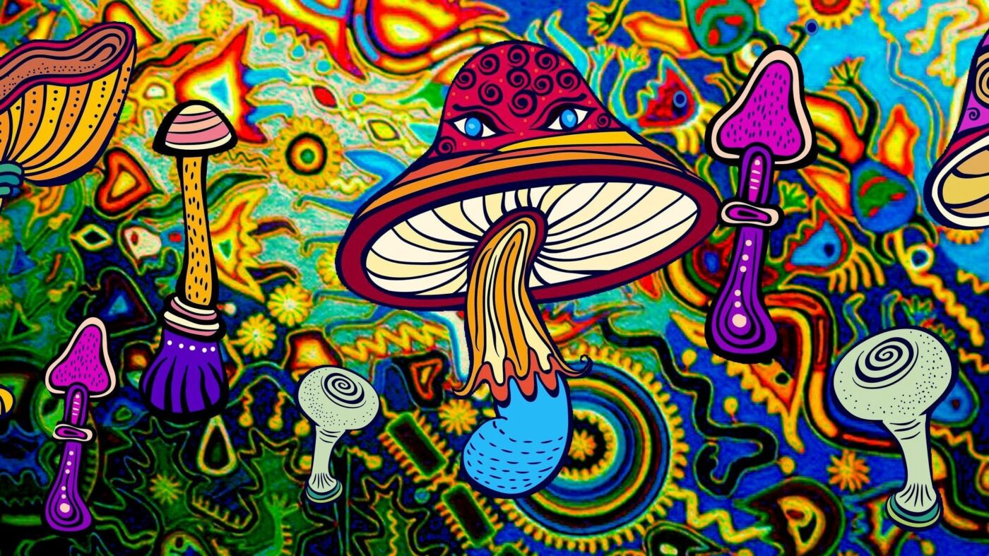 high quality psychedelic mushroom products